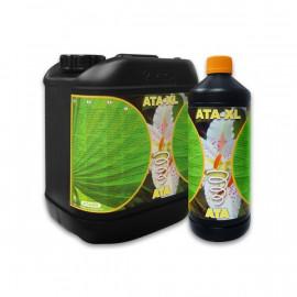 ATA - XL 10 L ATA